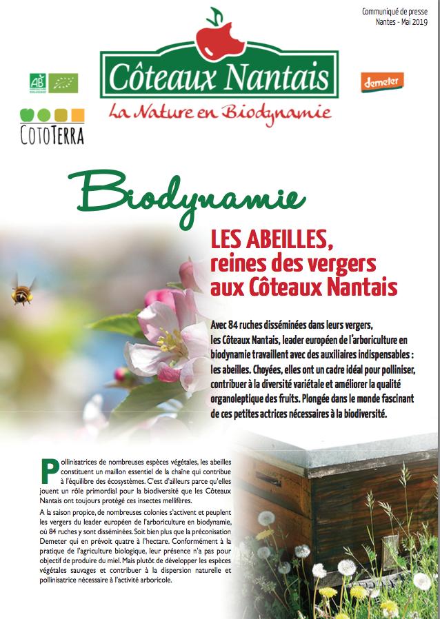 Communiqué de presse abeilles