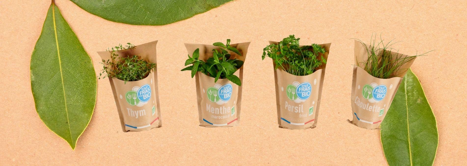 BIOPLANTS choisit le kraft durable pour ses herbes aromatiques bio