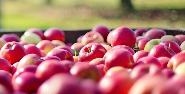 1543843873_apples-1004886_1280.jpg